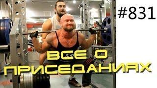 видео Приседания в Гакк-тренажёре - лучшее упражнение для тренировки тяжелоатлетов