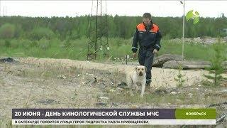 Лука Модрич теперь служит в ноябрьском отряде «Ямалспас»