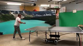 Table Tennis 2019 World Championship