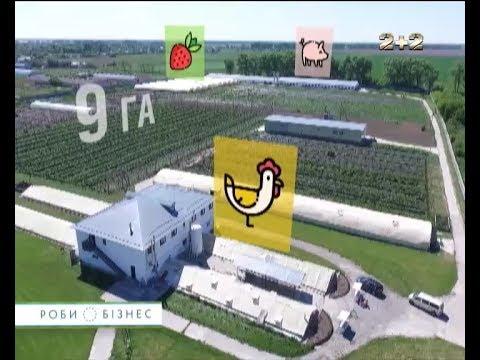 Органічна ферма:...