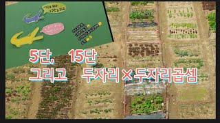 수포자를 예방하는 구구단 공부-5단/15단