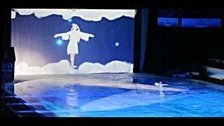 Видеоинсталляция. «Бременские музыканты на льду»