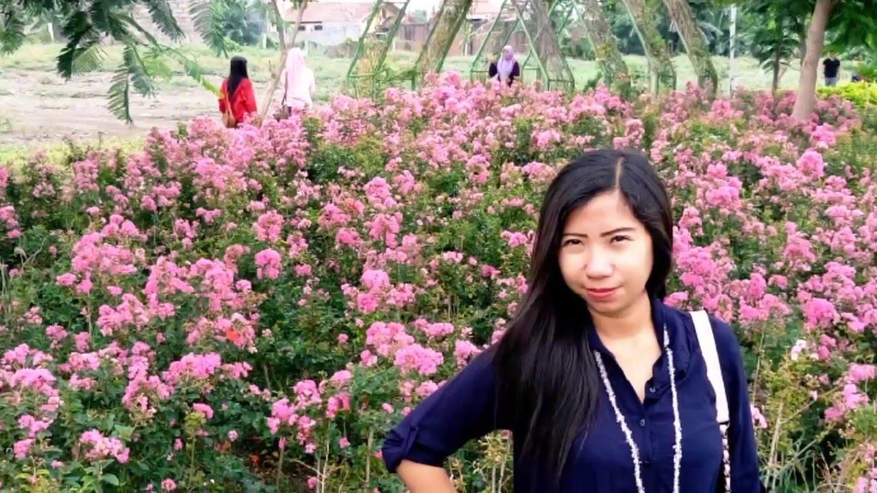 Hutan Bambu Taman Harmoni Keputih Surabaya Youtube