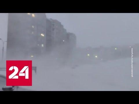 """""""Погода 24"""": Европейскую часть России ждет очередное потепление - Россия 24"""