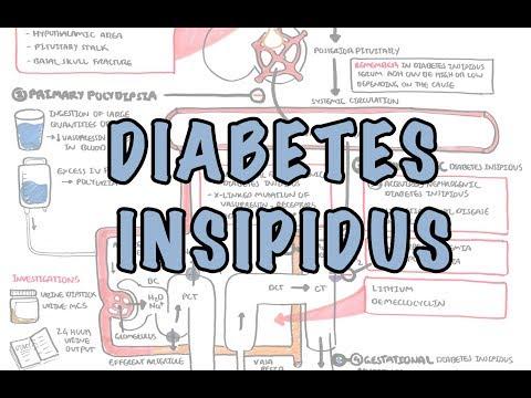 diabetes-insipidus---overview-(causes,-pathophysiology,-investigations)