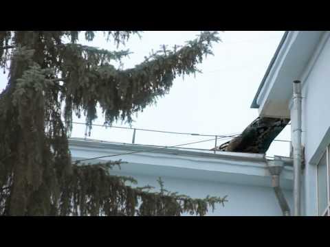 Самарец заснял, как огромная змея ползает по крыше дома