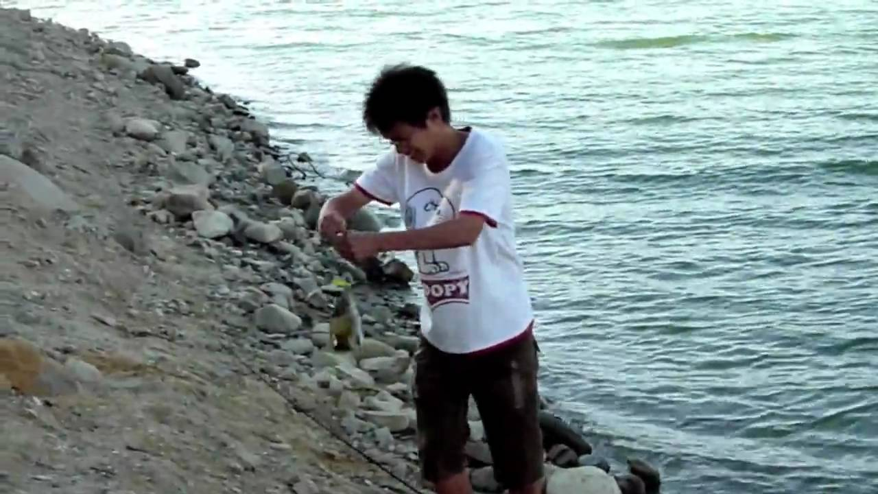 Bass fishing at cachuma lake ca u s a youtube for Lake cachuma fishing report