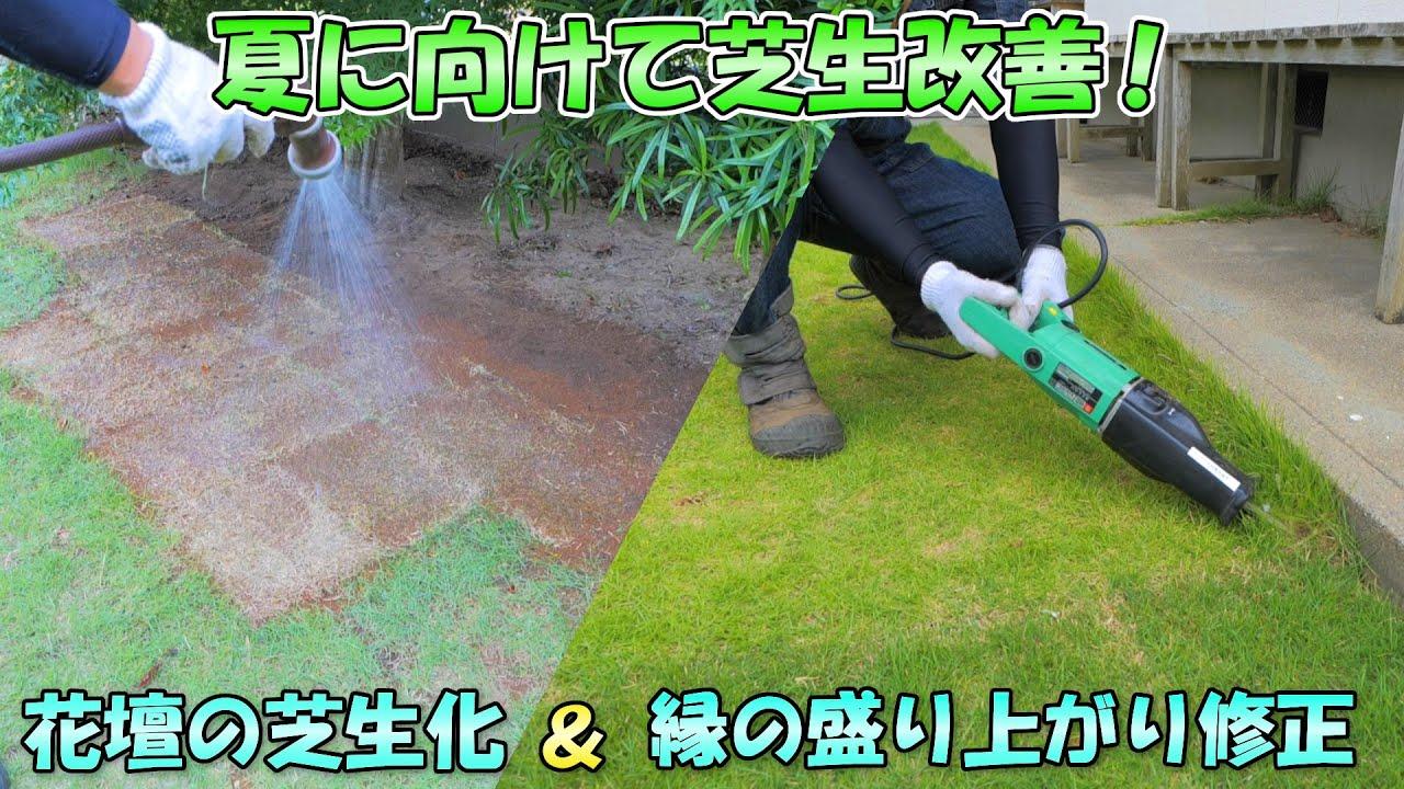 夏に向けて芝生の改善【花壇の芝生化&縁の盛り上がり修正】