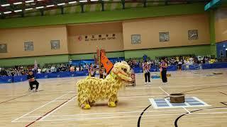 Publication Date: 2019-07-21 | Video Title: 20190721 仁德天主教小學 盤青