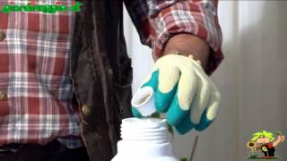 utilizzare un fungicida