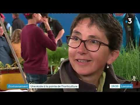 Une école à La Pointe De L'horticulture (partie 2)
