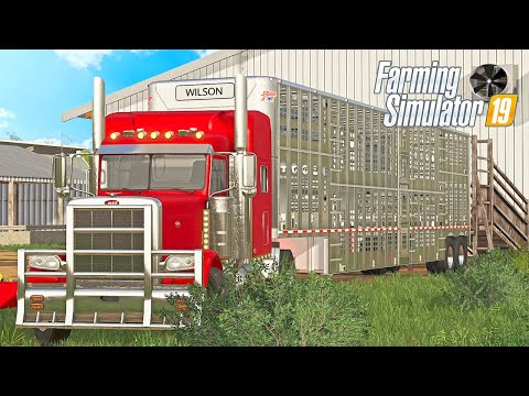HAULING CATTLE TO OUR NEW FARM! (FARMERSBURG IA MAP) | FS19