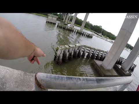 Pier & Bridge Fishing | Georgia Coast