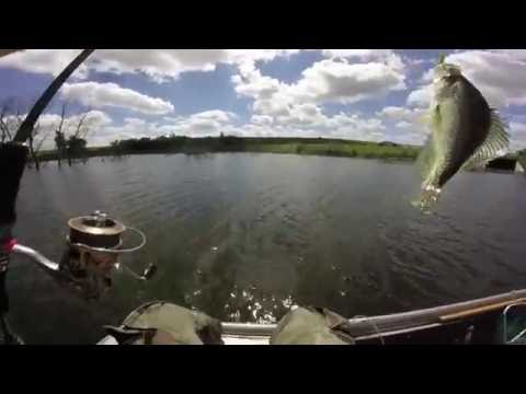 Crappie Fishing & Tree Jumping | Lost Grove Lake