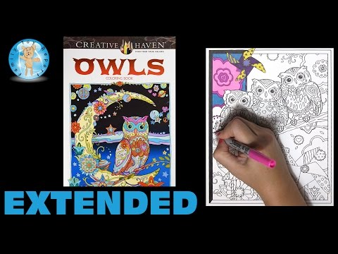 Creative Haven Owls By Marjorie Sarnat Adult Coloring Book Three Owls Extended - Family Toy Report
