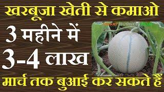 खरबूजा की खेती से कमाओ 3-4 लाख रूपए एक एकड़ से || earn 4 lakhs this farming in one ekad