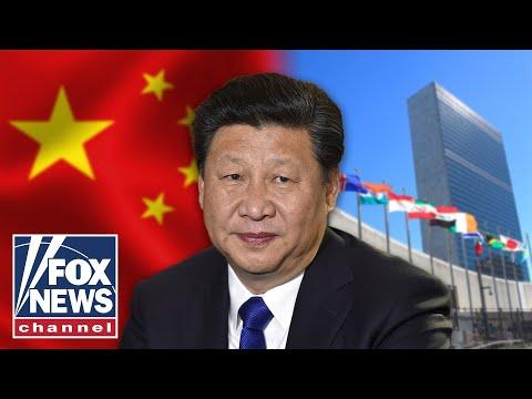 Why is China buying US farmland? Morgan Ortagus explains