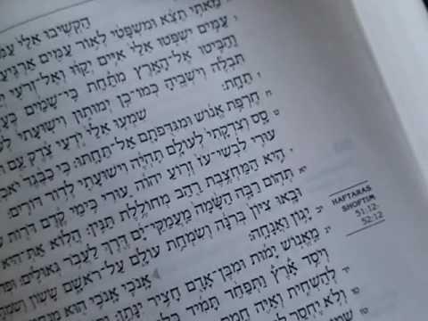 Paleo hebrew alphabet...lexicon study pt.5