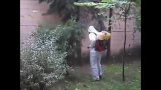 Gambar cover Eda İlaçlama - Bahçe İlaçlama
