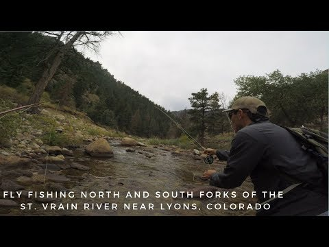 Fly Fishing North And South Forks Of The St. Vrain River Near Lyons, Colorado