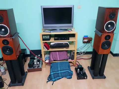 Musical Paradise MP 301 MK3 Deluxe Version 2018 +DAC Dual 4497+ลำโพงThe Possible CH1