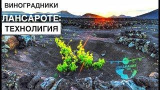 видео Туры на Лансароте. Отдых на Лансароте в 2018 году по цене от 21226 рублей