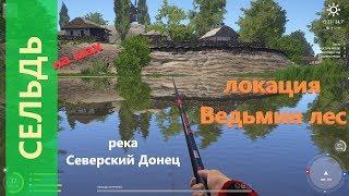 Русская рыбалка 4 река Северский Донец Сельдь напротив обрыва