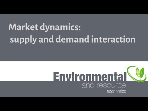 Market dynamics: supply and demand interaction