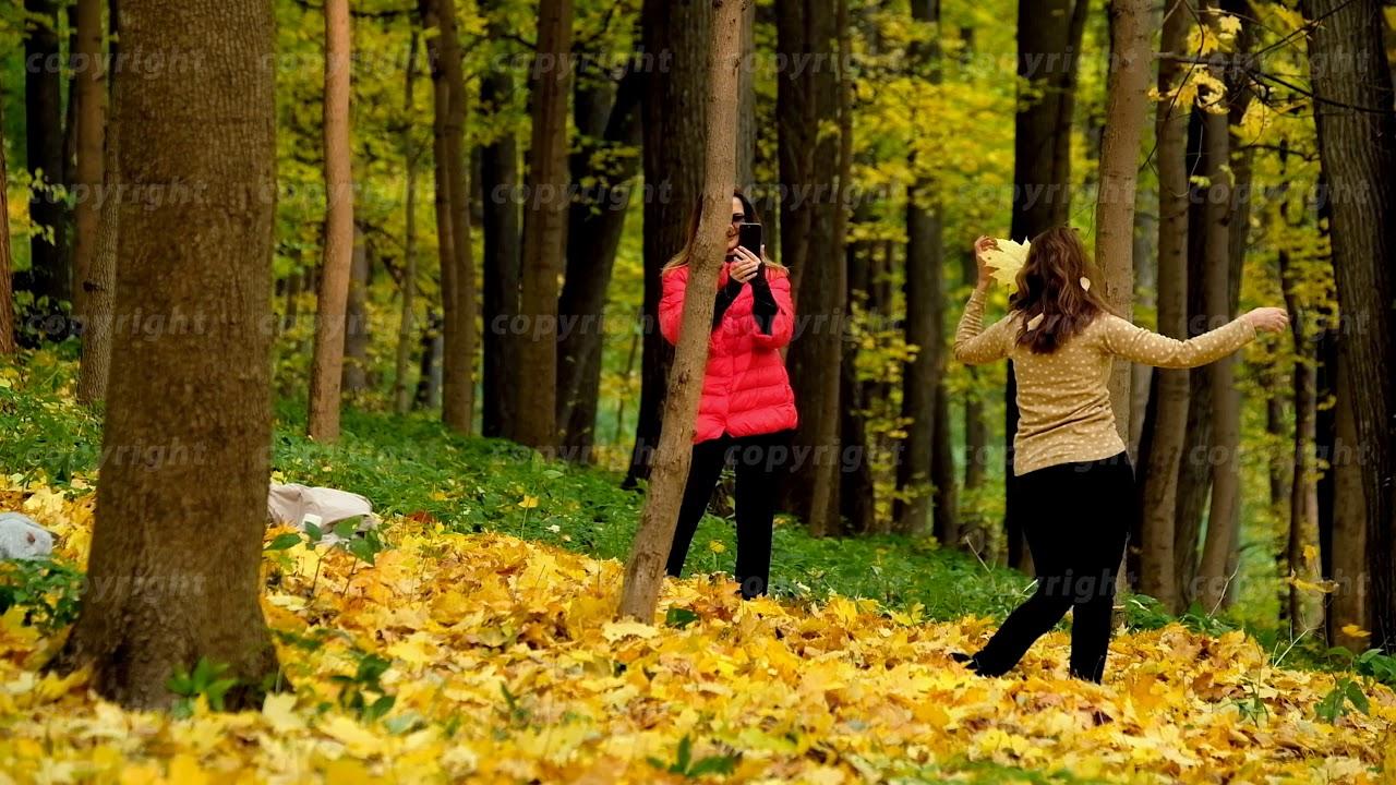 картинки двое осень