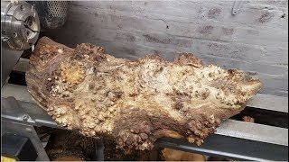 Woodturning - Burly Oak Log
