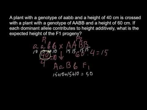 How to solve quantitative genetics problems