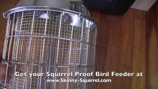 Original Skinny Squirrel Proof Bird Feeder Review
