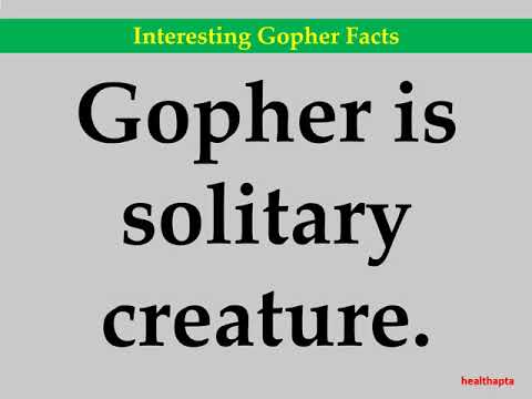 Interesting Gopher Facts