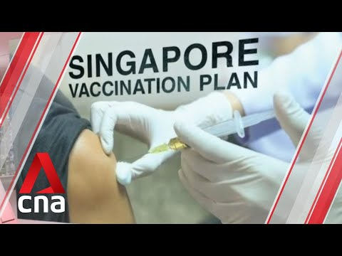Details on Singapore's COVID-19 vaccination programme could be released by January thumbnail