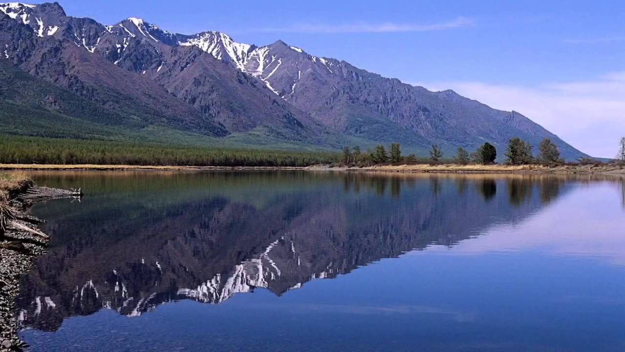 Freshwater Biome - YouTube