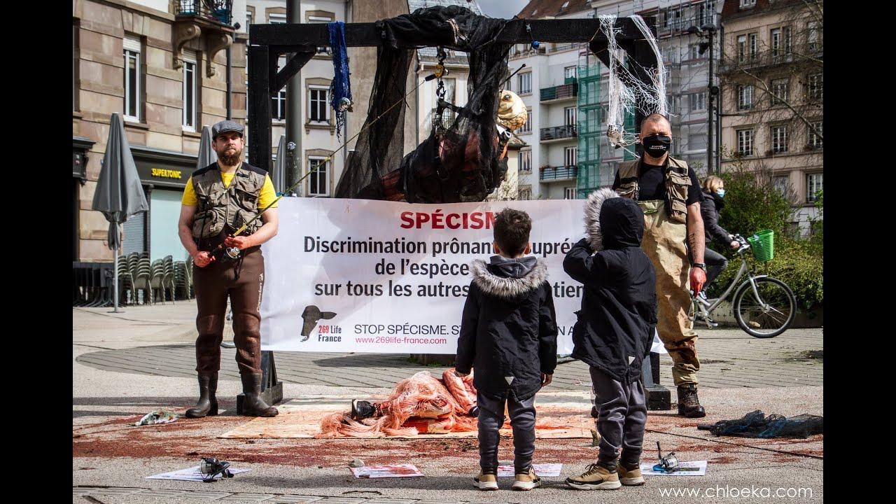 Journée mondiale pour la fin de la pêche - STRASBOURG - 27-03-21