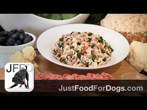 Daily Recipes For Dogs: Lamb & Brown Rice | JustFoodForDogs