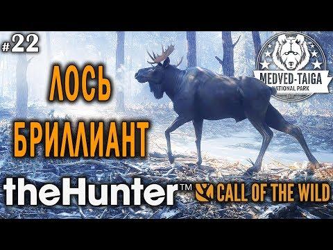 TheHunter Call Of The Wild #22 🔫 - Лось-Бриллиант - Винтовка - Медведь, Кабан, Рысь, Лось, Кабарга
