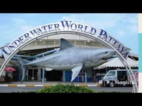 PATTAYA UNDERWATER WORLD HD! News Factors