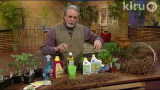 John Dromgoole vegetable problems: Central Texas Gardener
