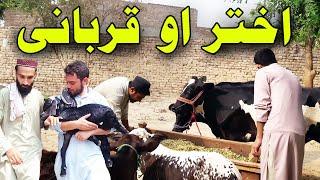 Akhtar ao Qurbani || Pushto new funny video 2020 || Banda Nabi Vines