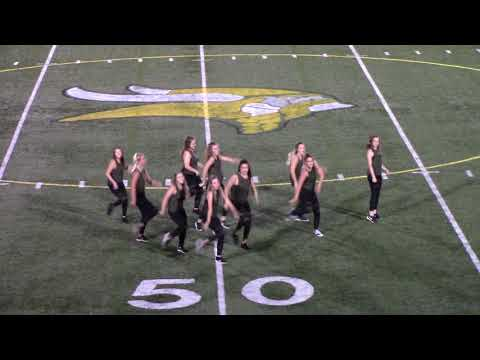 Loudoun Valley High School Dance Team August 25 2017