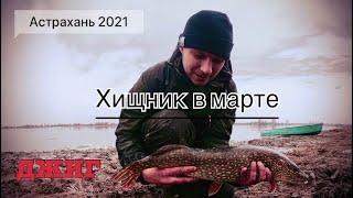 Ловля хищника на джиг в марте Рыбалка в Астрахани Щука судак жерех Открытие сезона 2021