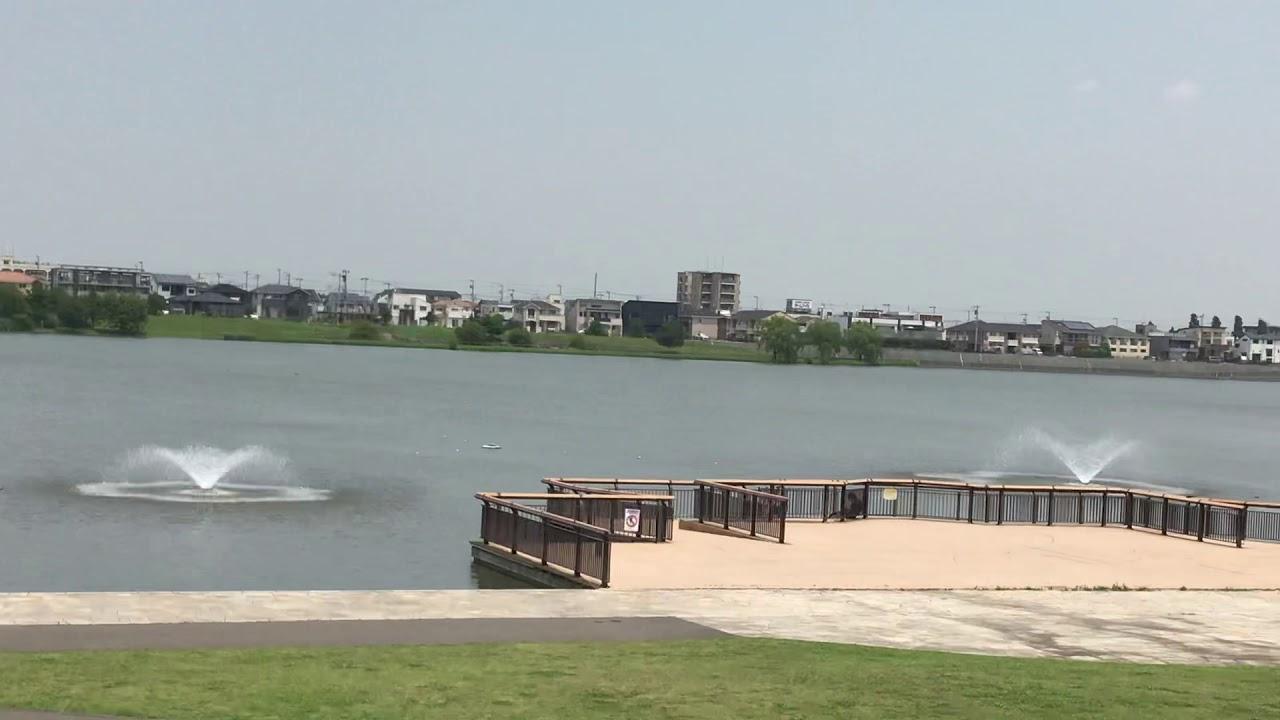 噴水 公園