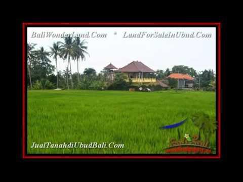 Magnificent LAND FOR SALE IN Ubud Pejeng BALI TJUB541