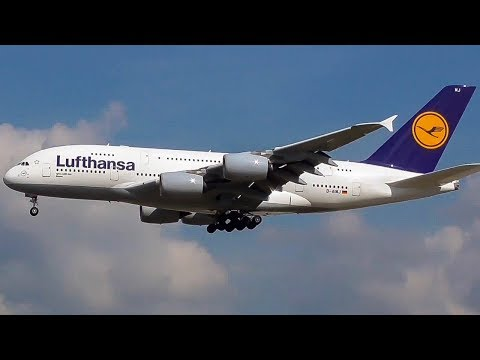 HEAVY SUMMER ARRIVALS | PLANE SPOTTING at Frankfurt Airport (FRA) | 747, A380, 777 + more | 2017