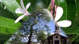 杉山清貴さんの「Aloha Akua」を歌いました(Album/Island afternoon I...