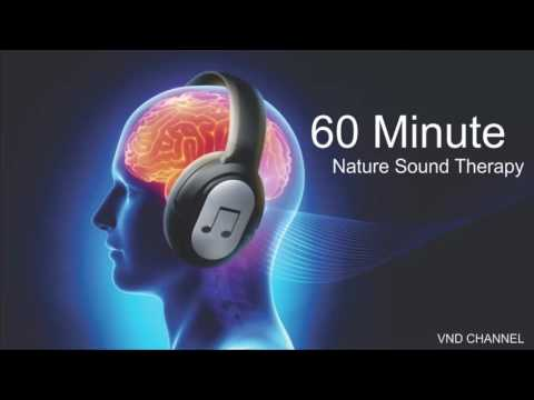 60 Minute Relaxing Music with Water Sounds Meditation - YOUTUBE