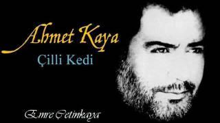 Ahmet Kaya - Cilli kedi