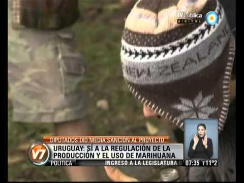 Visión 7: Uruguay: media sanción en diputados
